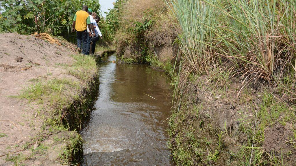 Das Sandbecken des oberen Kanals kann mitgetragenen Sand und Vegetation noch nicht zuverlässig filtern. Damit die Turbine nicht beschädigt wird, muss dieses neu ausgelegt werden.