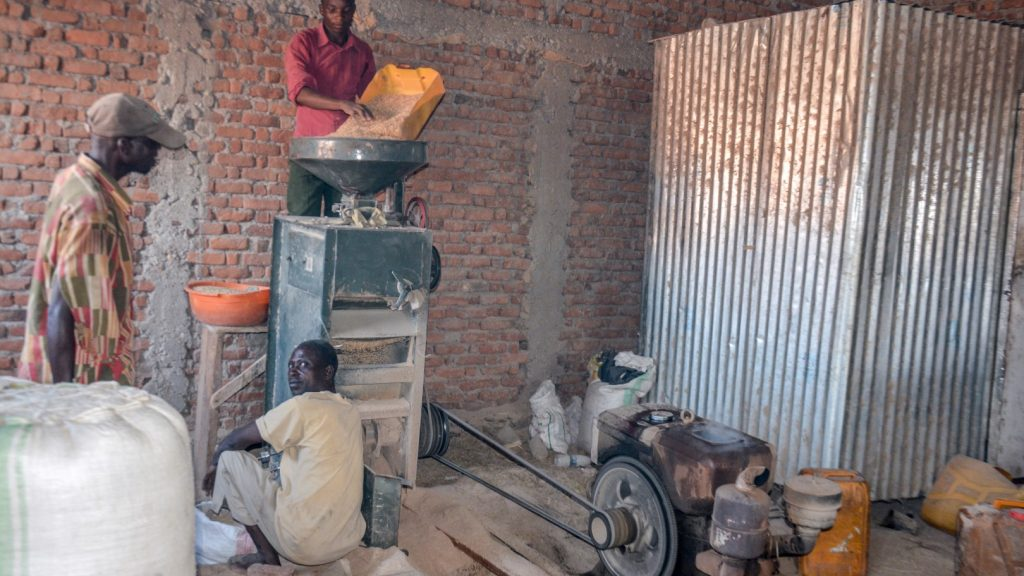 Maniok ist ein wichtiges Nahrungsmittel auf Idjwi. Mit Mühlen wie diesen werden die Knollen gemahlen und im Anschluss zu Maniokmehl verarbeitet.